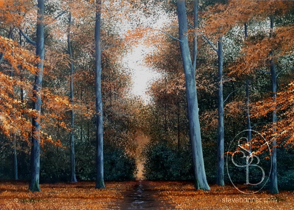 Autumnal Path by Steve Bonner
